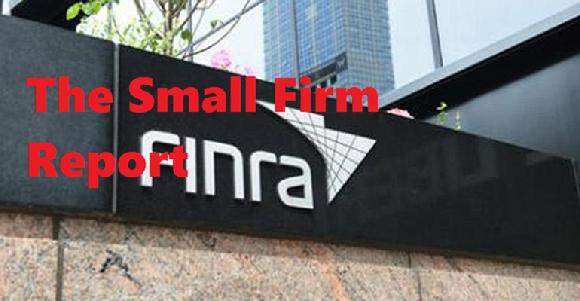 The Small Firm Report
