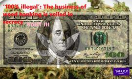 '100% illegal': The business of weed banking is veiled in secrecy